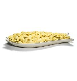 Fischgericht + 500g Orecchiette aus Hartweizengrieß